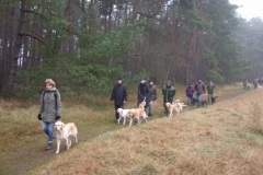 2012-12-01_nikolausspaziergang-011_16712009273_o